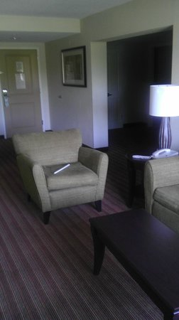 Holiday Inn Hotel & Suites Orange Park: The entry way leads to the bedroom area