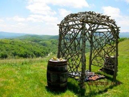 Banner Elk Winery: Picnic in the Upper Vineyard