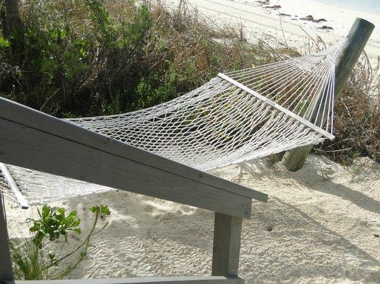 castaway cay  hammock at the cabana hammock at the cabana   picture of castaway cay sandy point      rh   tripadvisor