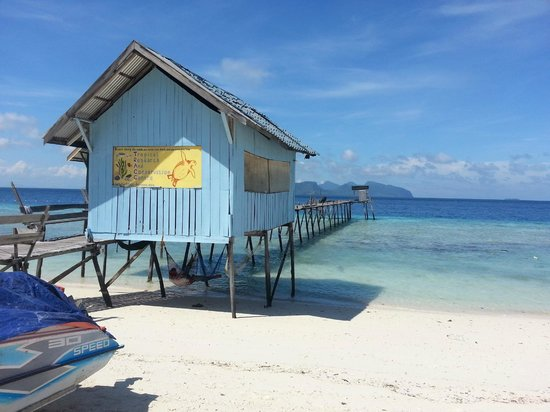 Pom Pom Island Resort & Spa: Research found on the other side of the island, outside the resort