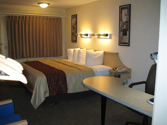 Red Roof Inn Florence - Civic Center: View of room from the back