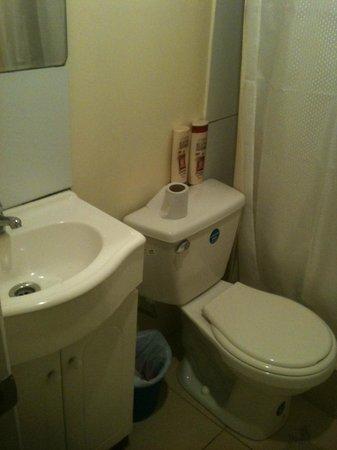 Hotel Montealegre de Valparaiso: Papel higiénico de la peor calidad, y sin donde colgarlo