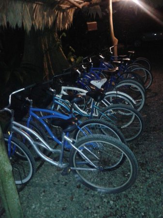 Cariblue Beach & Jungle Resort: Las Bicis