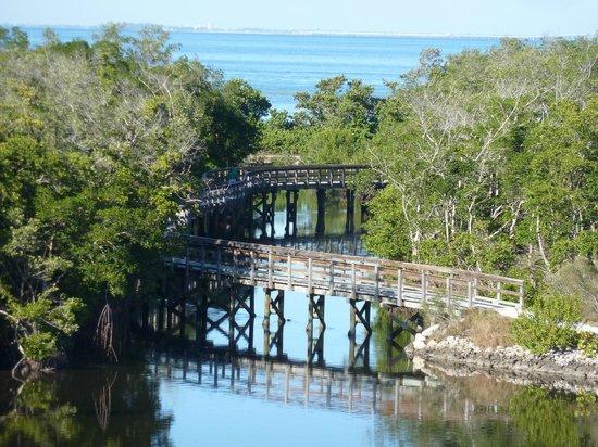 Robinson Nature Preserve: Boardwalk on Osprey Loop