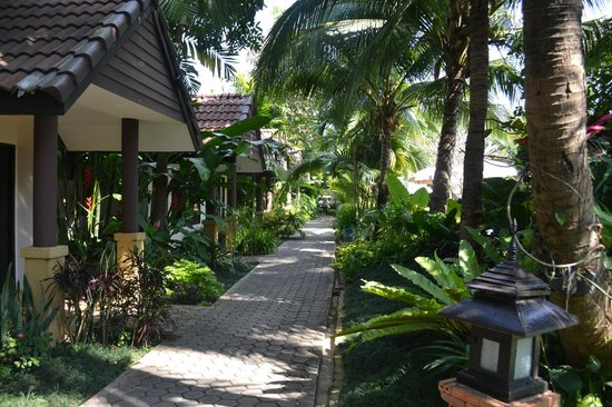 Laluna Hotel and Resort: Pathway