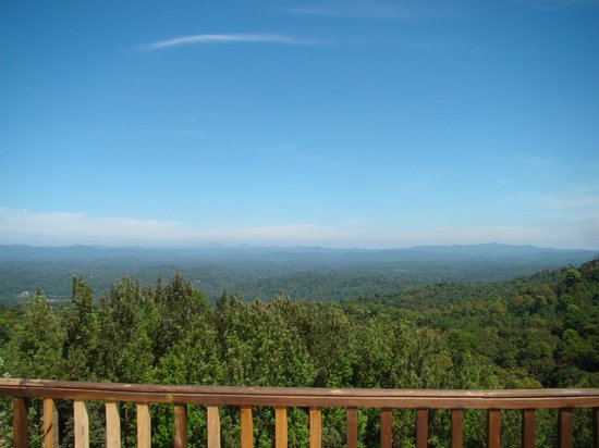 The Tamara Coorg: View from the deluxe cottage balcony -you will have to wait for this one!!