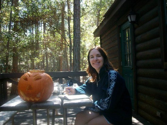 The Campsites at Disney's Fort Wilderness Resort: On the deck of our cabin writing tour plans