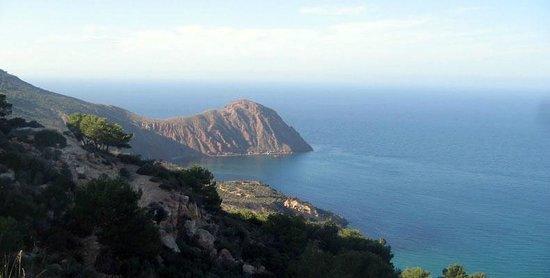 Oran Province, Algieria: .