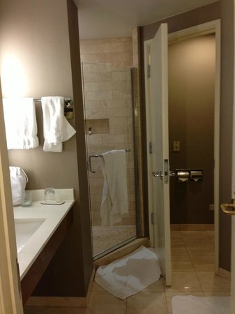 Fairmont Chicago Millennium Park: Bathroom