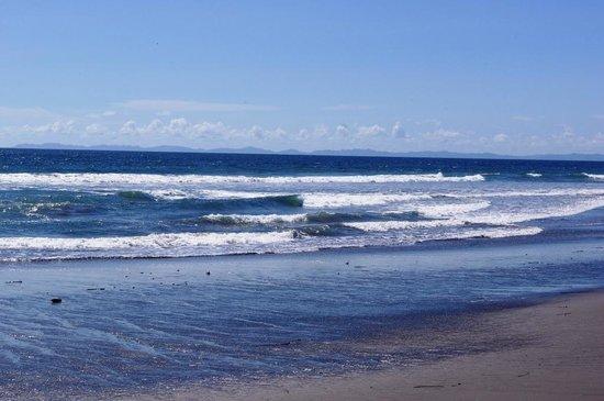 لاس أولاس بيتش ريزورت: Pacific ocean 