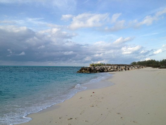 Bimini Sands Resort and Marina : THE BEACH