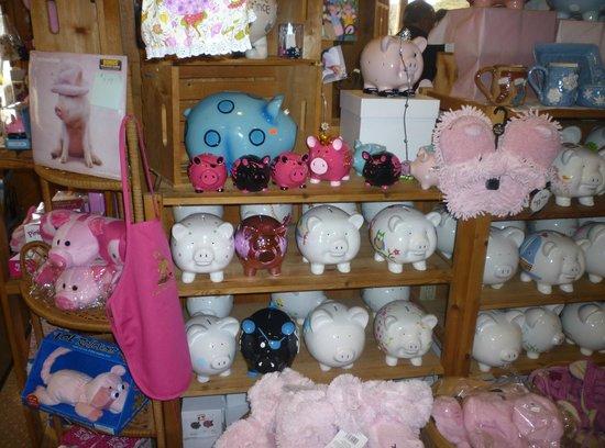 Piggy's Restaurant: Piggy's souvenirs