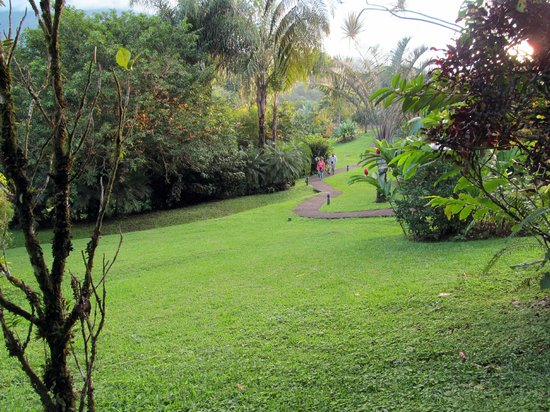 Arenal Paraiso Hotel Resort & Spa: View of grounds from hot pools