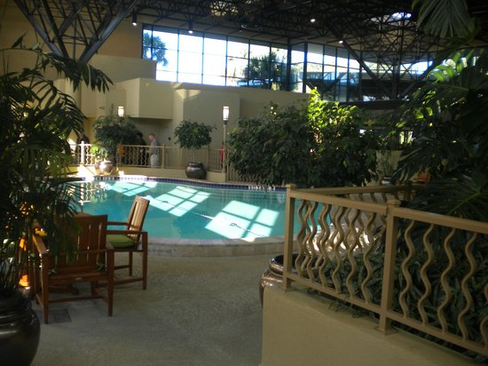 Crowne Plaza Jacksonville Airport Hotel: Beautiful indoor portion of pool