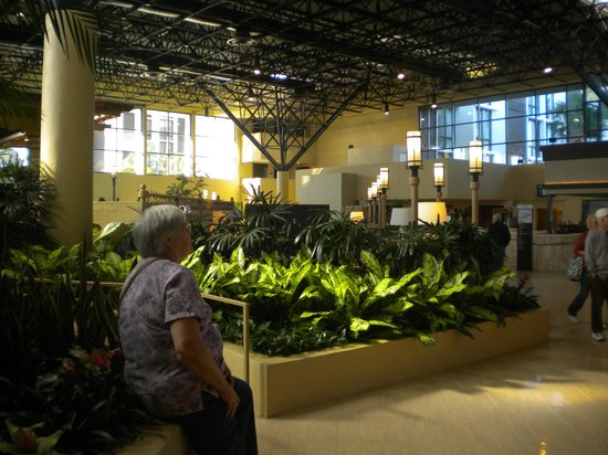 Crowne Plaza Jacksonville Airport Hotel: Great indoor landscaping around lobby & pool