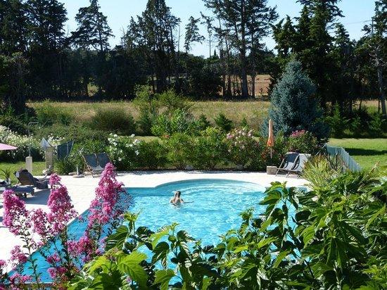Mas Les Fleurs d'Hilaire : Pool.