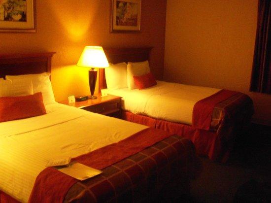 Baymont Inn & Suites Springfield: Room