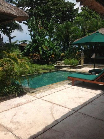 Melia Bali Indonesia: Private pool and garden in Villa no 2