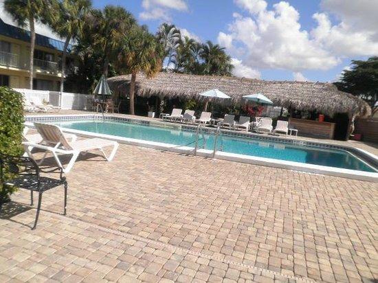 Naples Courtyard Inn : Pool/ food area