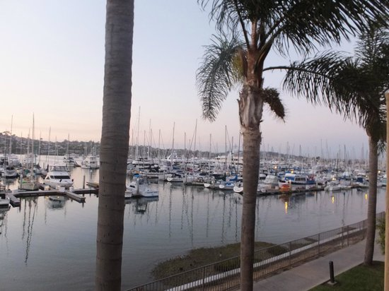 Best Western Plus Island Palms Hotel & Marina: View from the room