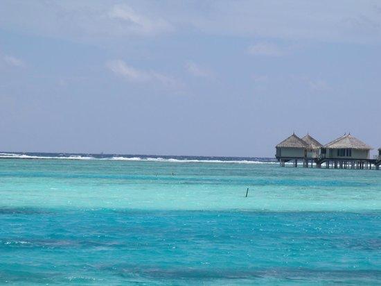 Cinnamon Dhonveli Maldives: mare