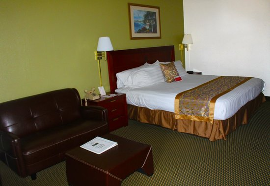 Ramada Temple Terrace/Tampa North: King Size Room