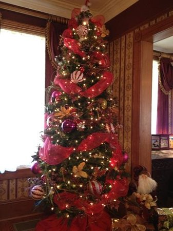 Christmas Tree In Living Room christmas tree in living room - picture of the cedar house inn, st