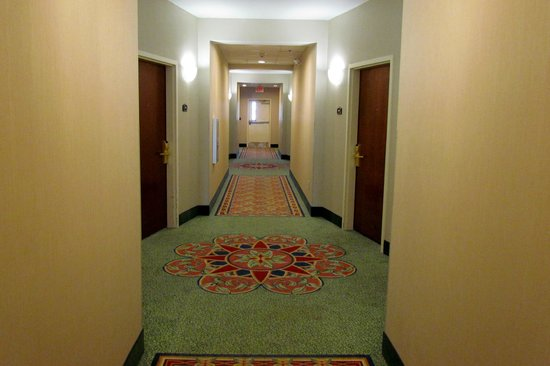 Comfort Suites Oceanview Amelia Island: Bright, colorful hallway