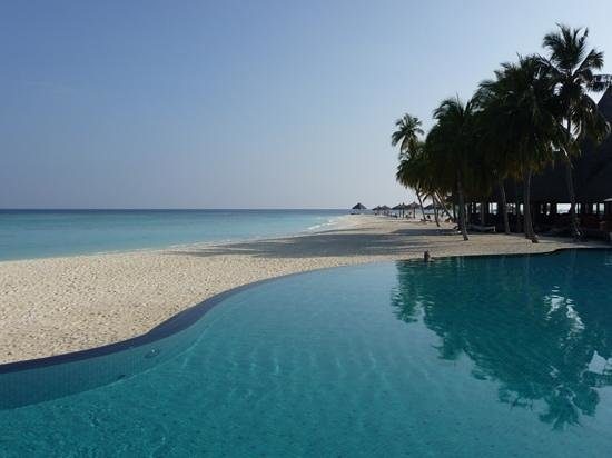 Veligandu Island Resort & Spa: infinity pool