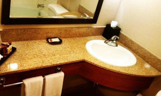 Sheraton Atlanta Hotel: Bathroom sink