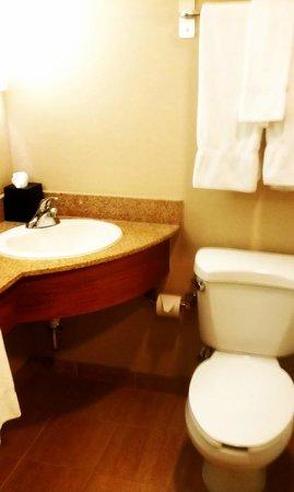 Sheraton Atlanta Hotel: Bathroom