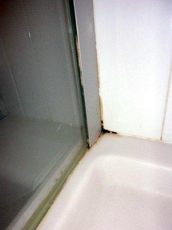 Novotel Milan Nord Ca Granda: Muffa nella doccia