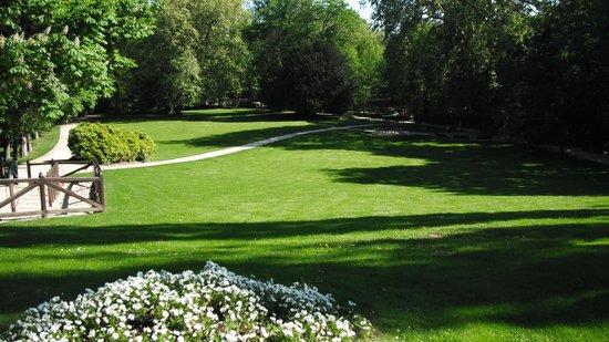 Hotel Le Blason: Front lawn of Leonardo Di Vinci's place