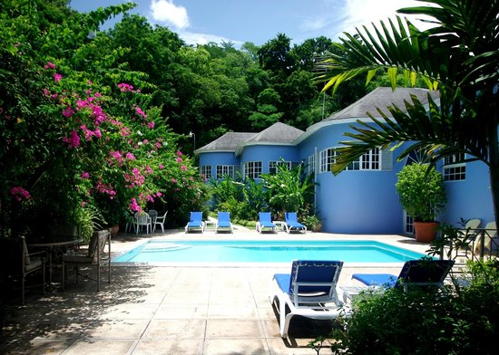 The Blue House Boutique Bed & Breakfast: Our Luxury Boutique Bed & Breakfast borders on a lush tropical forest.