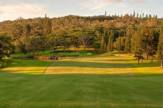 Experience Golf Course at Four Seasons Resort Lanai the Lodge at Koele