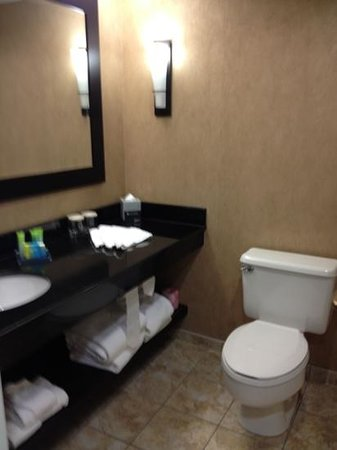 Radisson Hotel Fargo: lots of counter space. nice built in for towels and an actual hair dryer