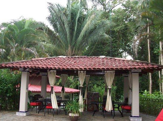 Casa Corcovado Jungle Lodge: Alrededor de la piscina