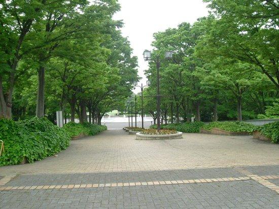 Shonai Green : 噴水遠景