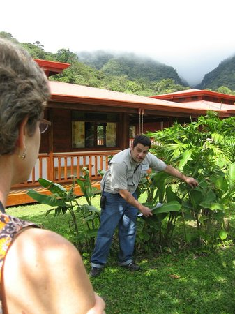 Ecolodge San Luis : Naturalist Arturo shows us local plants as clouds roll in.