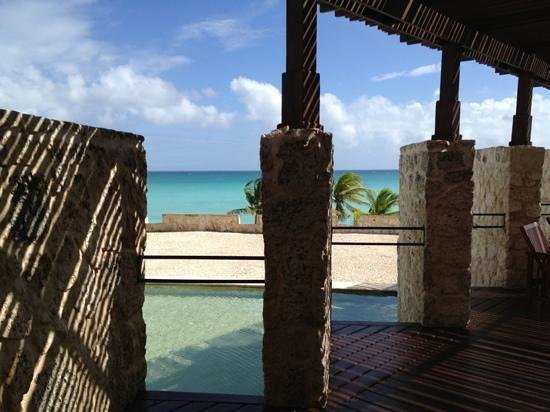 Sanctuary Cap Cana by Playa Hotels & Resorts: Stunning view from Ocean bar!