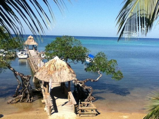 Tranquilseas Eco Lodge and Dive Center: Tranquilsea