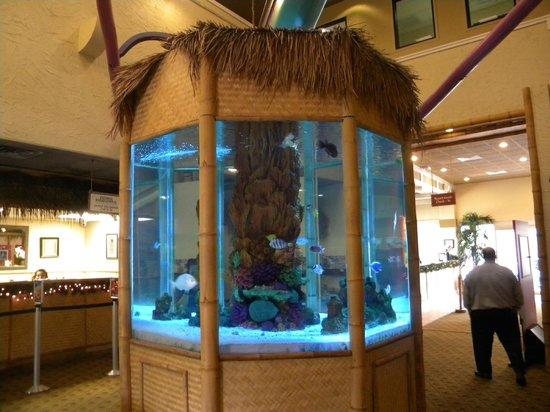 Liki Tiki Village: Hotel Lobby 