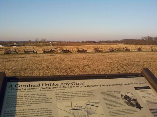 Antietam National Battlefield: The Cornfield. You need to visit this spot.