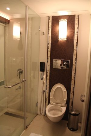 Bathroom Doors Trivandrum bathroom 1 - picture of windsor rajadhani, trivandrum - tripadvisor