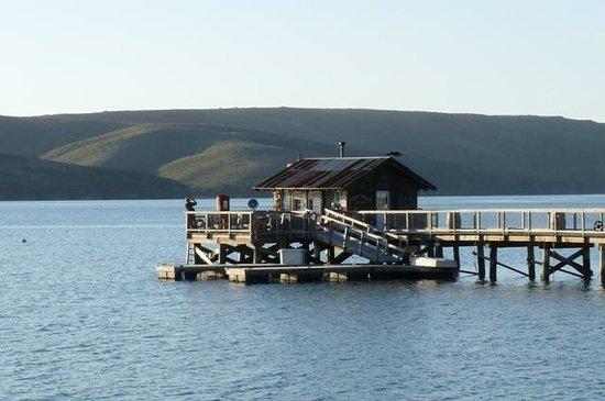 Nick's Cove Cottages: Nick's Cove pier. You can enjoy the yacht club boat shack.
