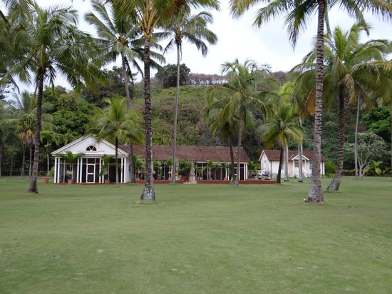 Allerton beach picture of national tropical botanical - National tropical botanical garden ...