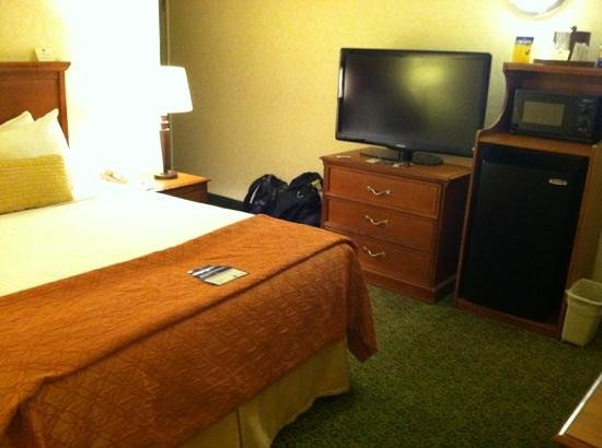 BEST WESTERN Garden Inn: large flat screen and microwave included