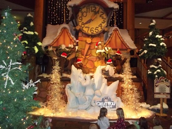 Great Wolf Lodge Traverse City Mi Review Resor Perbandingan Harga Tripadvisor