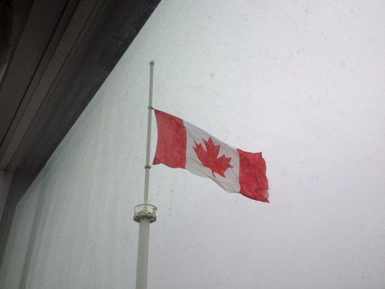 Sheraton Vancouver Guildford Hotel: View - truly cdn / flag in snow