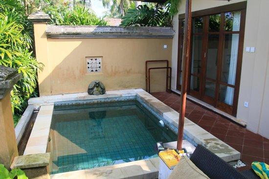 Plunge pool at pool garden villa, at Villa Semana